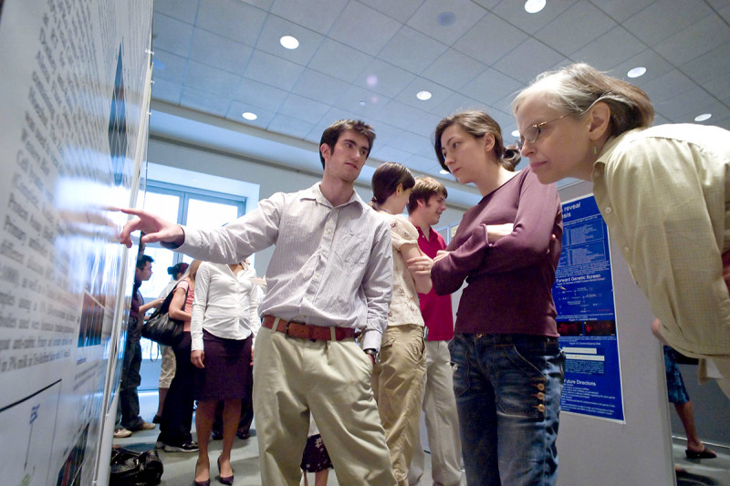 Summer Undergraduate Research Program