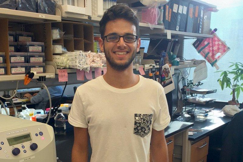 Orrel Weizman