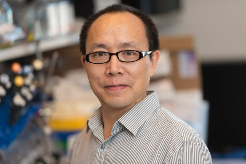Zilai  Wang, PhD