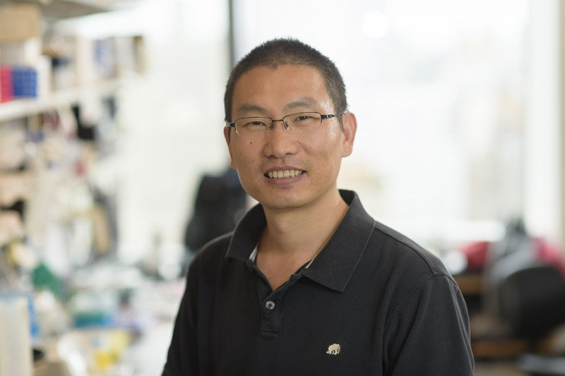 Minggang Zhang, Research Associate