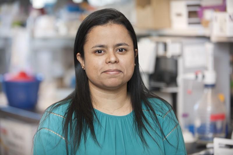 Marina Burgos da Silva, MSc, PhD