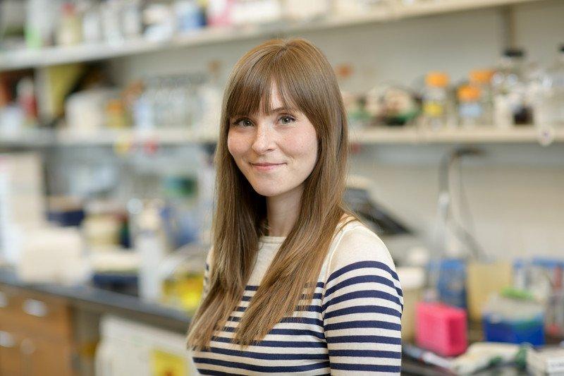 Shauna Houlihan, PhD