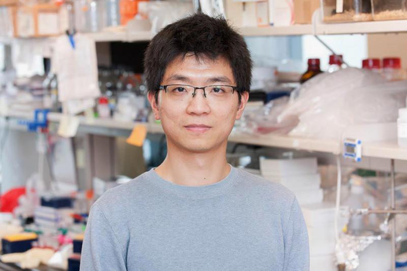 Chun Chou, Research Fellow