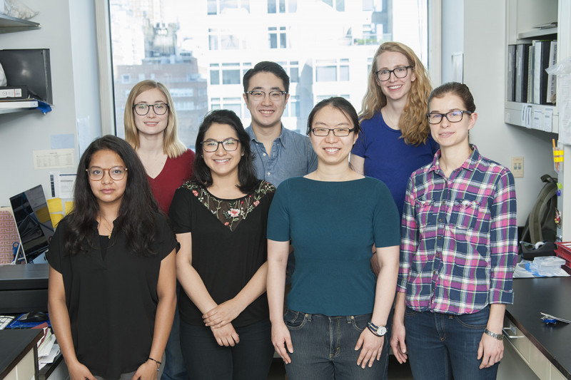 The Lydia Finley Lab