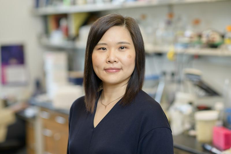 Mei-Ling Li