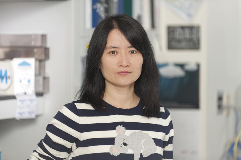 Jing Zhou, Ph.D.