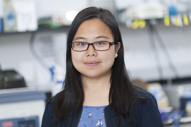 Yan Feng, PhD