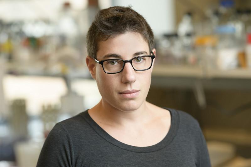 Ariella Glasner