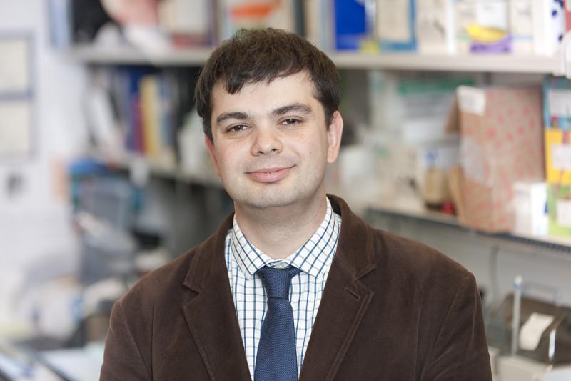 Dmitry Pankov, PhD
