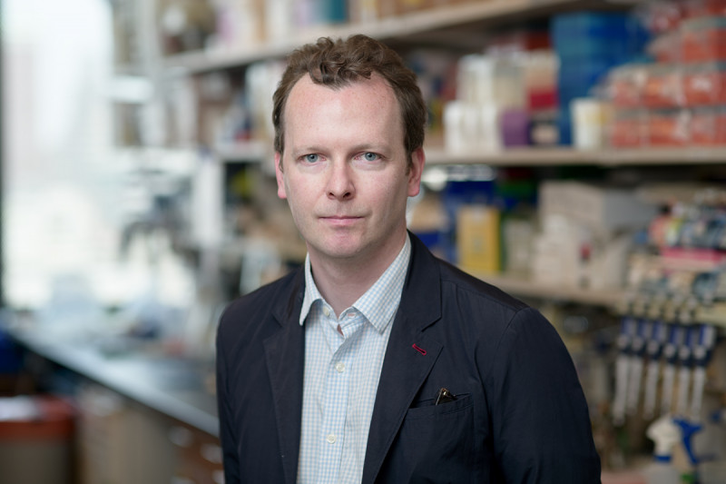 David Redmond, PhD
