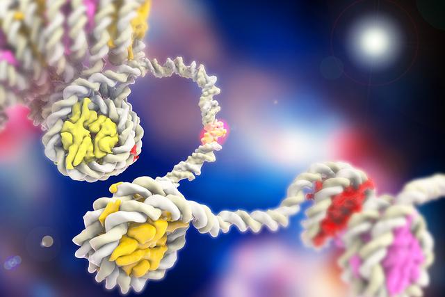 DNA winding around histones