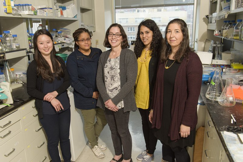 The Emily Foley Lab