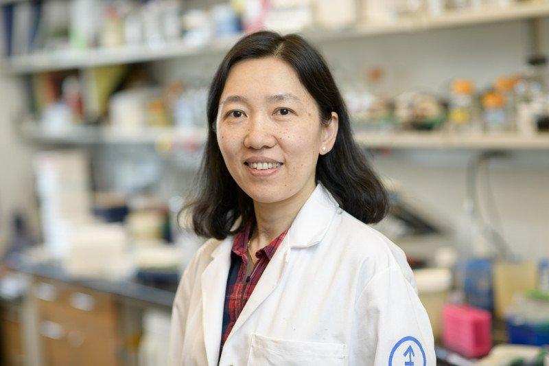 Sha Tian, MS
