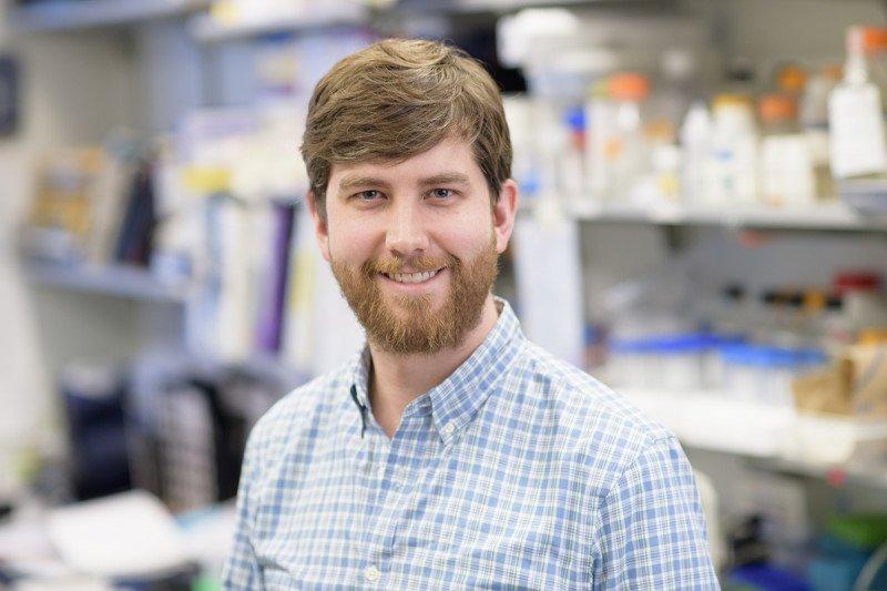 Andrew Lawton, PhD