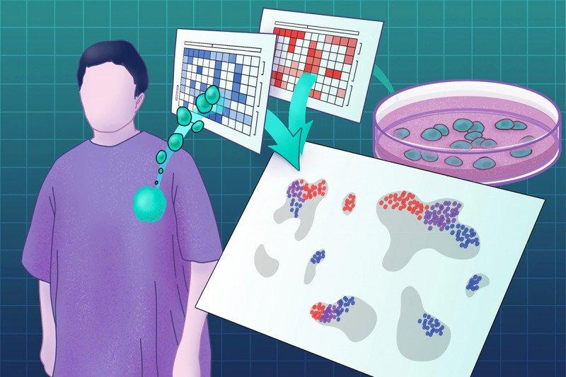 Metabolic drivers of immune heterogeneity
