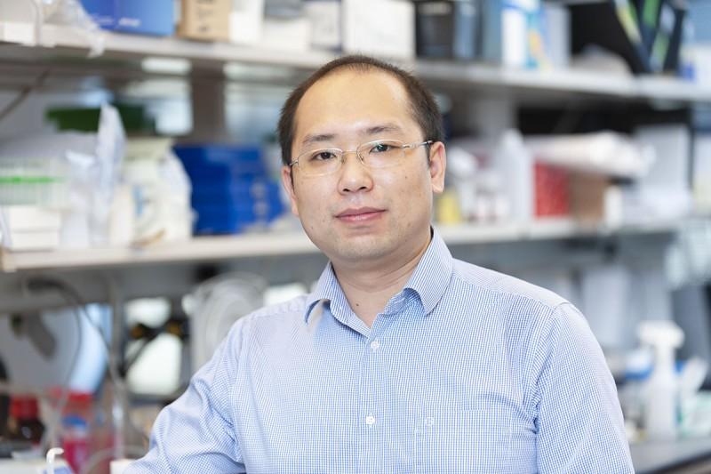 Zhenyu Luo