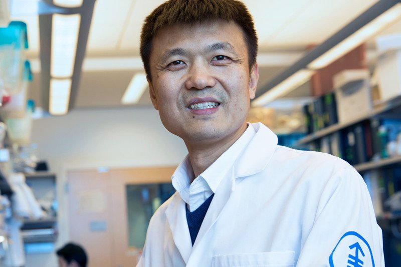 MSK immunologist Ming Li.