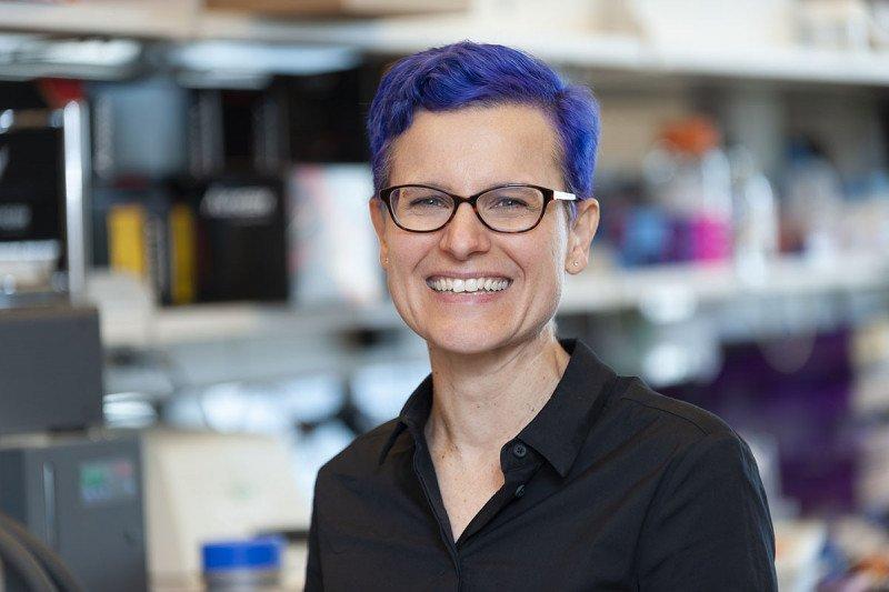 SKI immunologist Gretchen Diehl