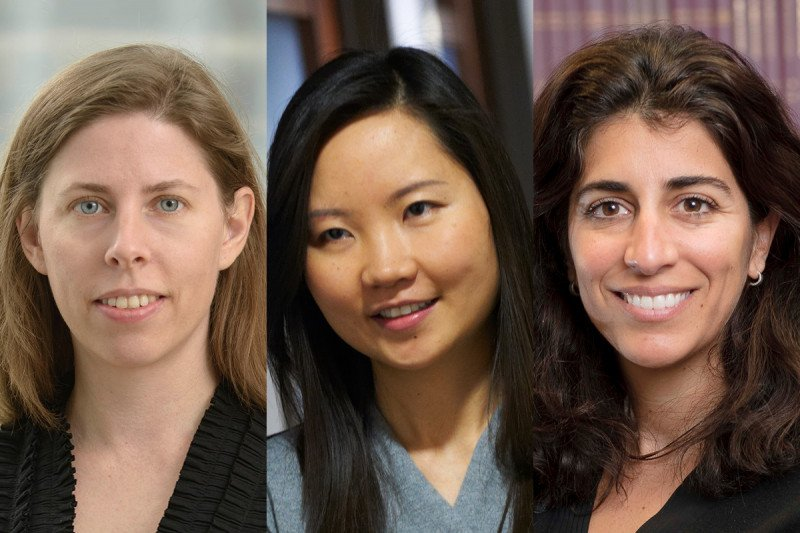 MSK scientists Margaret Callahan, Ronglai Shen, and Katherine Panageas