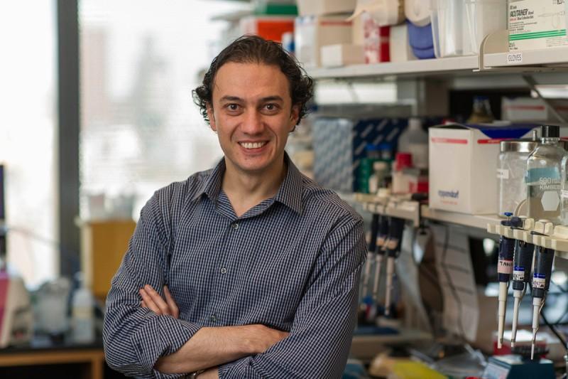 Dmitriy Zamarin, MD, PhD