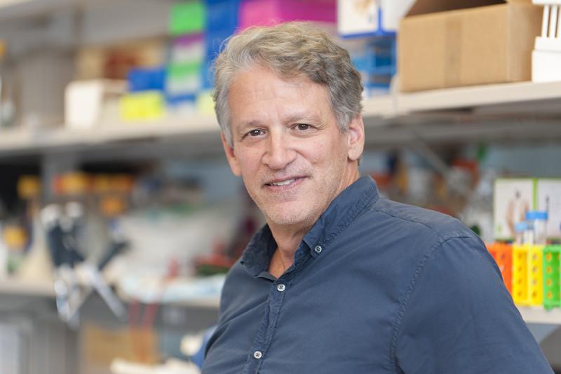 Robert Benezra, PhD