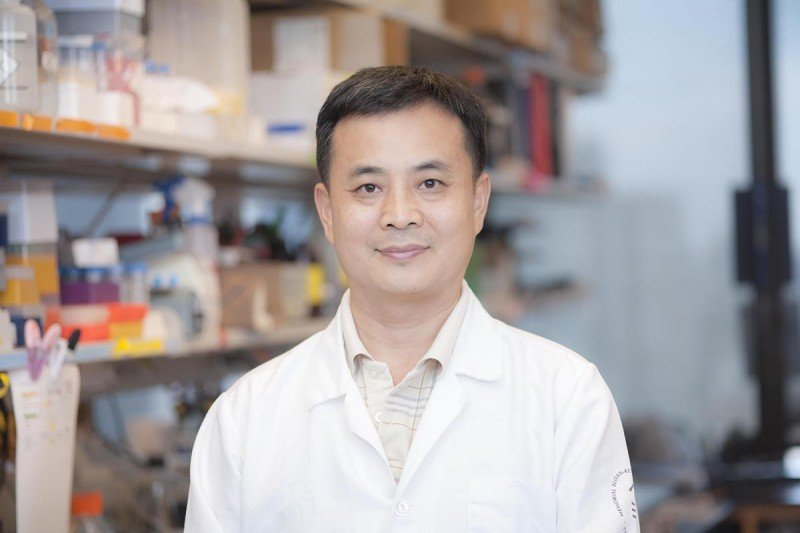 Xianzhong Wu, MD, Laboratory Manager