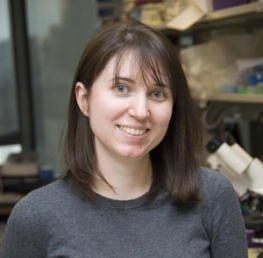 Amanda Holland, PhD