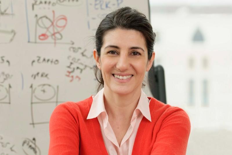 M. Lia Palomba, MD