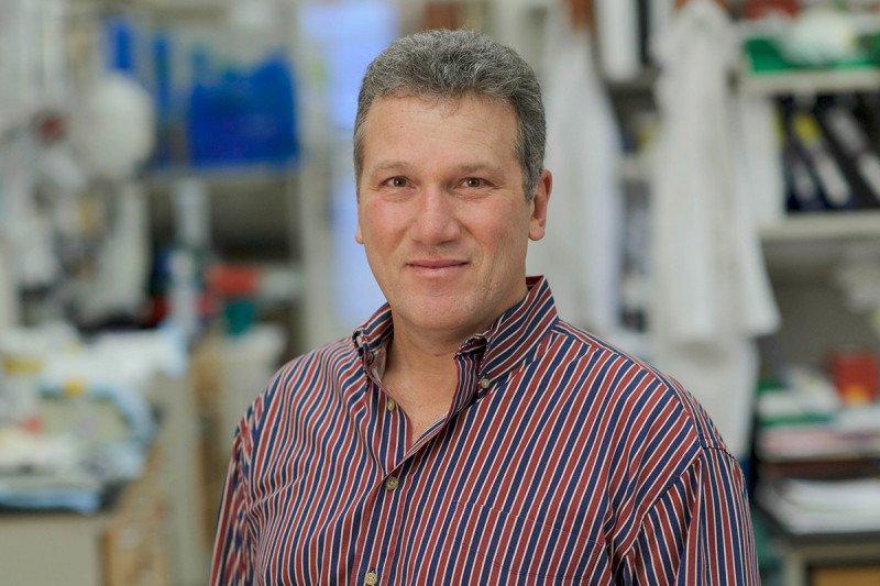 Jeffrey Knauf, PhD