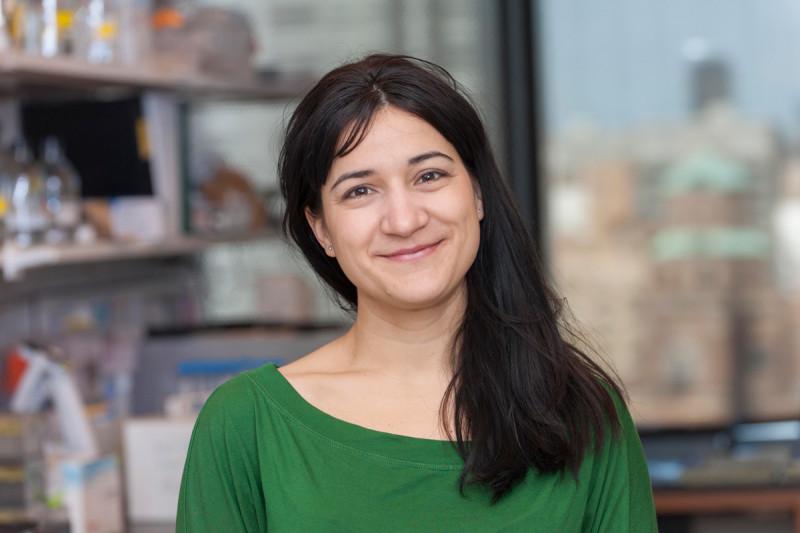 Laura Nicolas, PhD