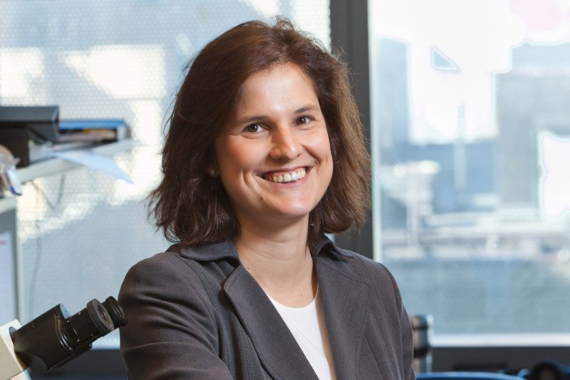 Efsevia Vakiani, MD, PhD