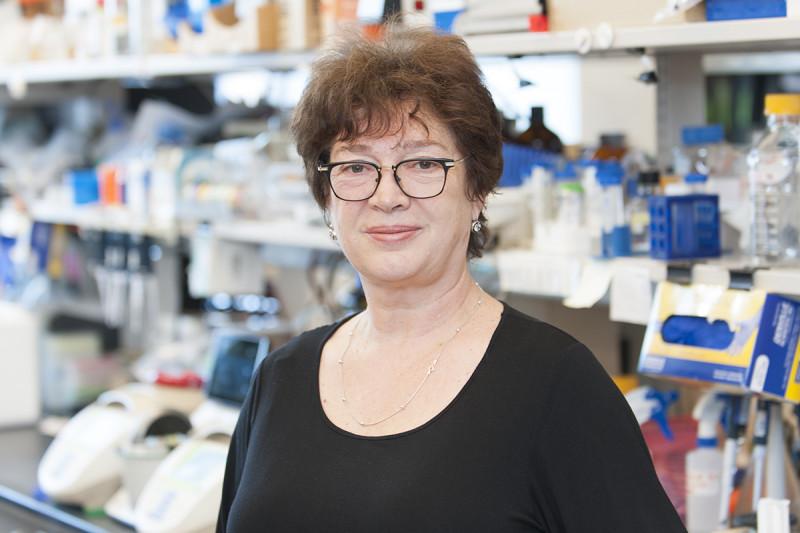 Regina Feldman, MD