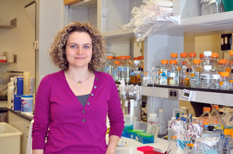 Eleni Mimitou, PhD
