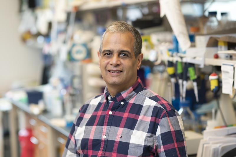 Robert Delsite, PhD