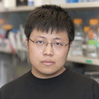 Qingfei Zheng, Research Fellow
