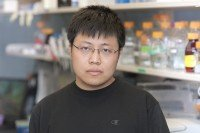 Qingfei Zheng, Research Fellow