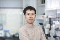 Yichi Xu, PhD
