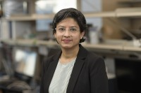 Pavitra Rao, Project Manager