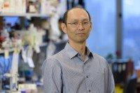 Takeshi Irie, MD, PhD