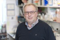 Vadim Dyomin, PhD