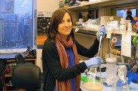 Amaia Lujambio, PhD