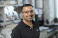 Rohit Prakash, PhD