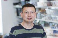 Junyi Wang, MS