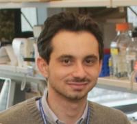 Dr. Alessandro Ruggiero