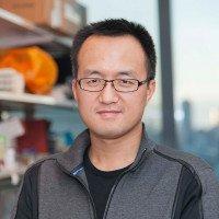 Jun  Tang