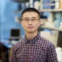 Zeguang Wu, PhD