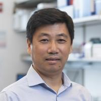 Li (Kenneth)  Zhang, MD