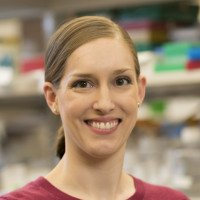 Allison Mayle, Postdoctoral Researcher
