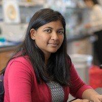 Roshni Basu, PhD