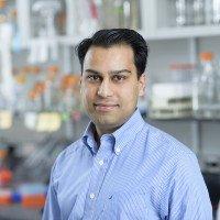Angad Garg, Ph.D